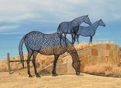 Wired Horses